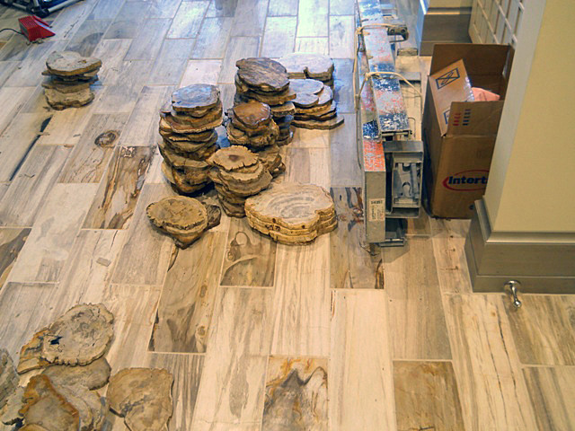 PetrifiedWoodtraditional-wall-and-floor-tile